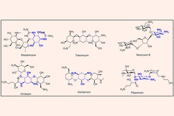 Cấu trúc hóa học của một số Aminoside