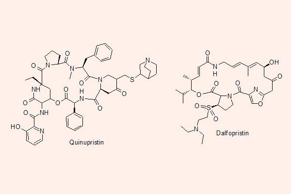 Cấu trúc hóa học của Quinupristin và Dalfopristin