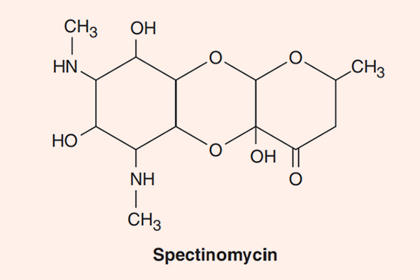 Cấu trúc hóa học của Spectinomycin