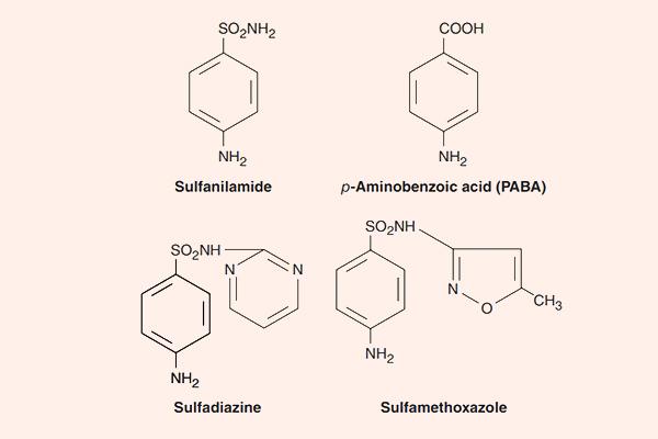 Cấu trúc hóa học của một số Sulfamide và PABA