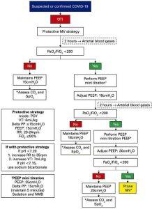 Hình 2 Lưu đồ thở máy ở bệnh nhân nghi ngờ hoặc xác định chẩn đoán COVID-19