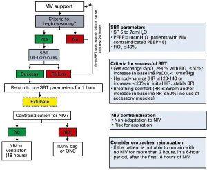 Hình 3 Sơ đồ cai thở máy ở bệnh nhân nghi ngờ hoặc đã xác định chẩn đoán COVID-19.