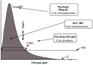 Fig. 2.1 Nguyên lý dược động học và dược lực học