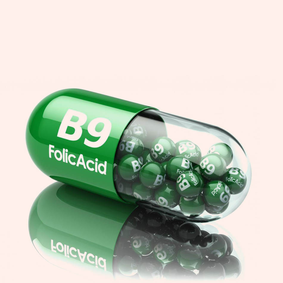Tác dụng của vitamin B9