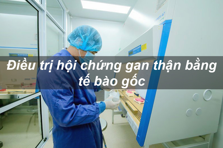 Điều trị bệnh hội chứng gan thận bằng tế bào gốc
