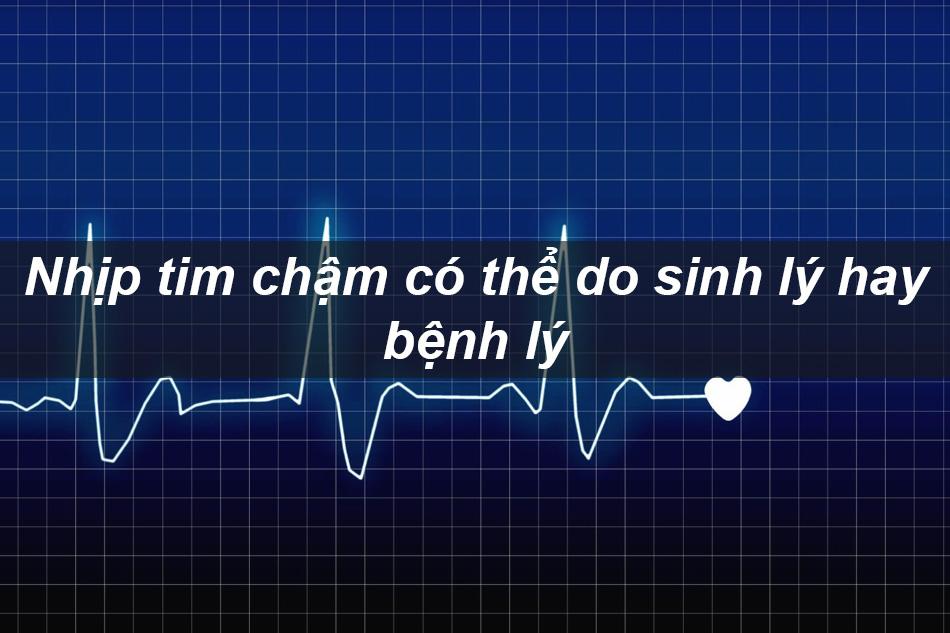 Nhịp tim chậm có thể do sinh lý hay bệnh lý