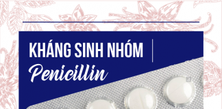 Nhóm thuốc Penicillin