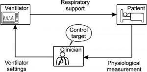 Hình 1. Hệ thống BS lâm sàng cổ điển. Các thiết lập đo lường sinh lý và máy thở được hiển thị chỉ là mẫu mực. Trong môi trường lâm sàng, các biến đo lường gốc cũng được sử dụng. BS lâm sàng đề cập đến các BS, nhà trị liệu hô hấp hoặc y tá