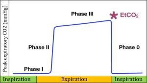 Hình 1 Sơ đồ của một capnogram bình thường bao gồm giai đoạn hít vào và thở ra.