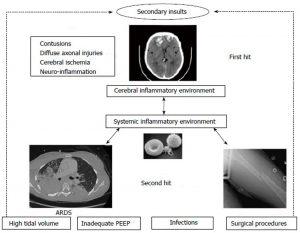 Hình 1 Mô hình cú đấm đôi trong bối cảnh chấn thương não. ARDS: Hội chứng suy hô hấp cấp tính; PEEP: Áp lực dương cuối thì thở ra.
