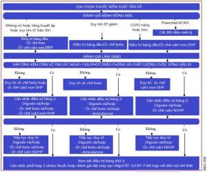 Sử dụng thuốc để kiểm soát tần số thất cần dựa vào bệnh lý đồng mắc