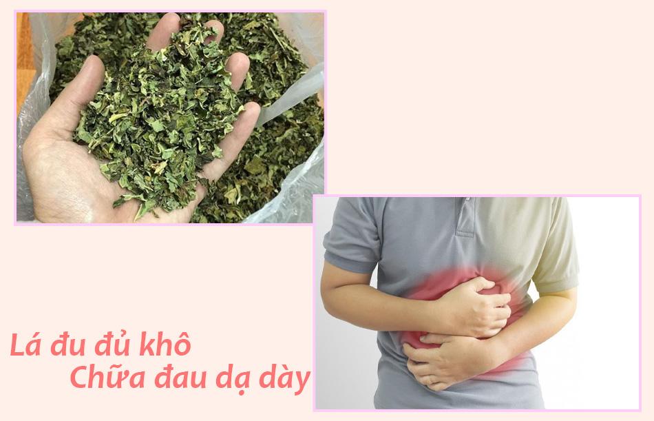 Mẹo dùng lá đu đủ khô chữa đau dạ dày