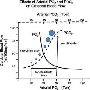 Hình 2 Tác dụng của CO2 động mạch lên lưu lượng máu não.