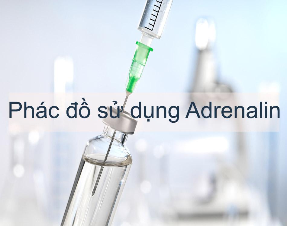 Phác đồ sử dụng Adrenalin