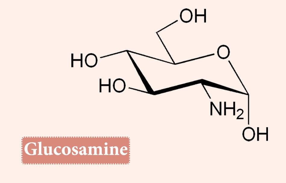 Công thức hóa học của Glucosamine