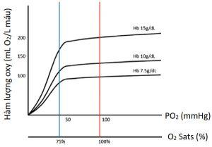 Hình 1. Hàm lượng oxy phụ thuộc vào nồng độ Hb và khả năng oxy hóa
