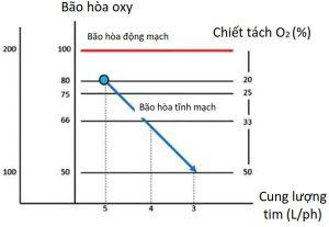 Hình 2. Tăng chiết tách oxy với giảm SvO2 và cung lượng tim