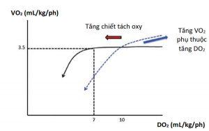 Hình 3. Tiêu thụ oxy trở nên phụ thuộc nguồn cung cấp khi DO2/VO2 giảm xuống dưới 2:1