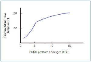 Hình 3. Carbon dioxide và lưu lượng máu não (Bersten và Soni, 2003).