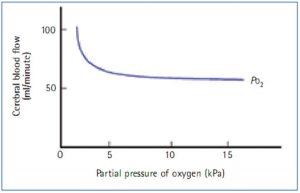 Hình 4. Oxygen và lưu lượng máu não (Bersten và Soni, 2003).