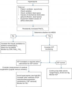 Hình 1: Cách tiếp cận xử trí chứng tăng CO2 máu ở bệnh nhân chấn thương não khi thở máy. ALI: Chấn thương phổi cấp tính; ARDS; Hội chứng suy hô hấp cấp tính; CSF: Dịch não tủy; ICP: Áp lực nội sọ; MV: Thông khí cơ học; VILI: Máy thở liên quan đến tổn thương phổi