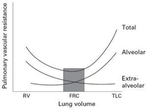 Hình 1: Sức cản mạch máu phổi và thể tích phổi [11]