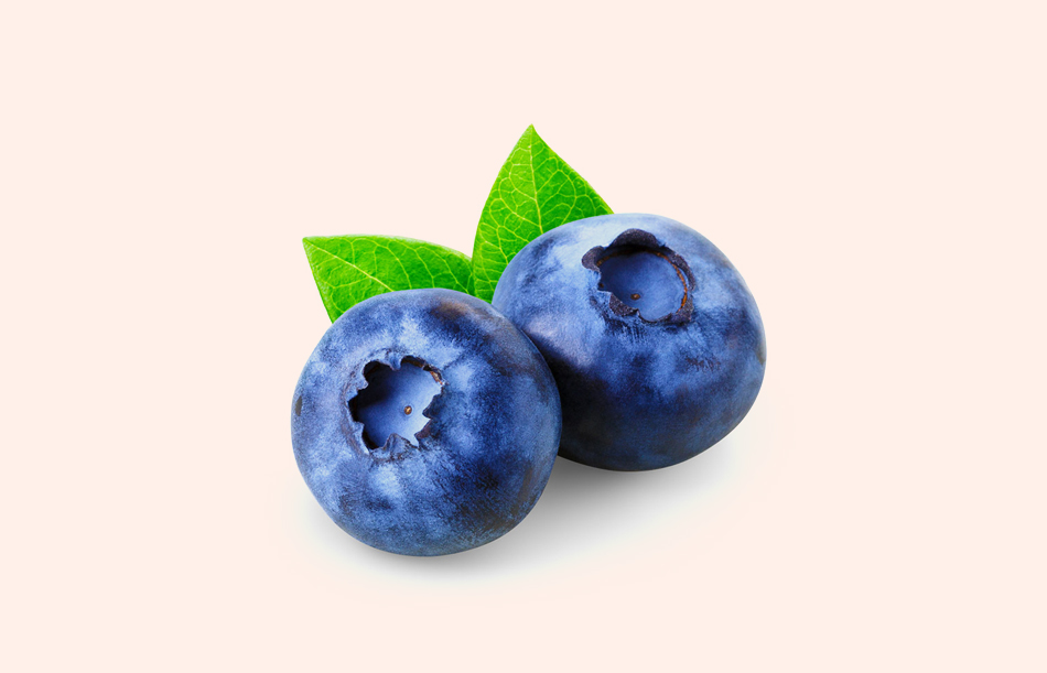 Việt quất không chỉ ngon về vị giác mà về dinh dưỡng nó cũng thuộc một trong các loại quả cực kỳ tốt trong quá trình tạo ra tinh trùng và cải thiện số lượng tinh trùng của nam giới