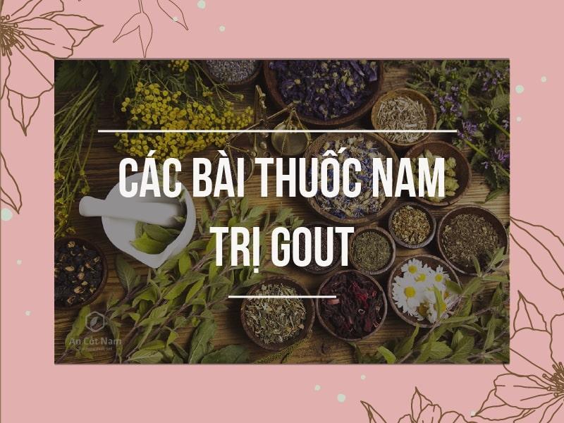 Sử dụng các bài thuốc Nam trong điều trị Gout