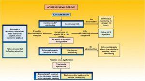 Hình 6. Sơ đồ xử trí đột quỵ sau khi nhập viện chăm sóc đặc biệt.
