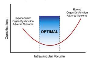 Hình 1. Lượng dịch truyền so với các biến chứng (được sửa đổi từ Bellamy) [1]. Cả giảm thể tích máu và tăng thể tích máu đều có thể dẫn đến rối loạn chức năng cơ quan và kết quả bất lợi. Thách thức là giữ bệnh nhân trong vùng tối ưu.