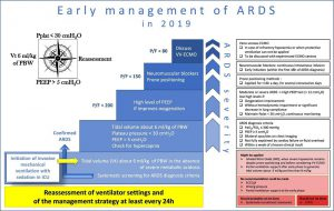 Hình 1 Thuật toán trị liệu về quản lý ARDS sớm (Ý kiến chuyên gia)