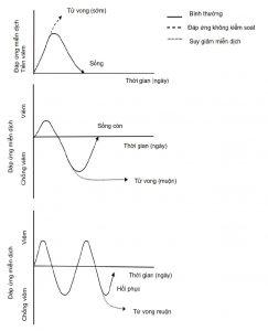 Hình. 1. Phản ứng miễn dịch của vật chủ đối với nhiễm trùng huyết.