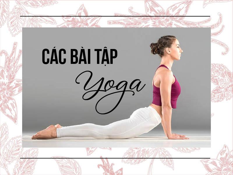 Yoga giúp chị em cải thiện chất lượng xương khớp