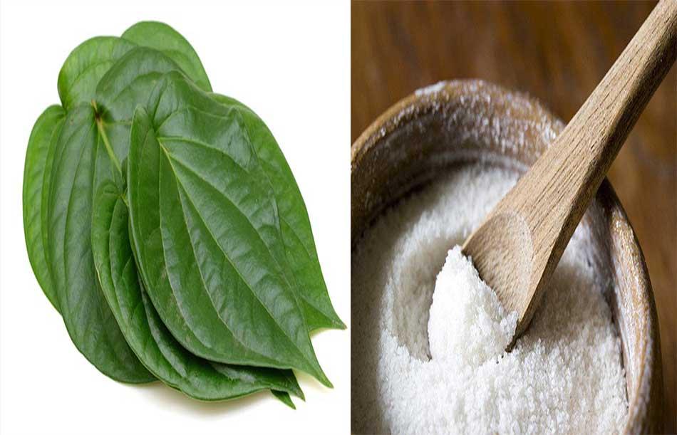 Bài thuốc đắp lá trầu không chữa bệnh dạ dày