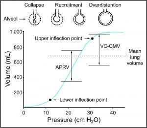 Hình 3. Biểu diễn đồ họa của thông khí cơ học thông thường (thông khí bắt buộc liên tục kiểm soát thể tích [VC-CMV]) và thông khí giải phóng áp lực đường thở (APRV) được đặt chồng lên trên đường cong áp lực-thể tích. Để đạt được thể tích phổi trung bình như nhau, thông khí thông thường, với tỷ lệ I:E thấp hơn, sẽ cần PEEP cao hơn, và do đó, việc cung cấp cùng một VT sẽ có thể tích cuối thì hít vào cao hơn và do đó tăng nguy cơ chấn thương do quá mức. Từ Ref. 6, với sự cho phép.