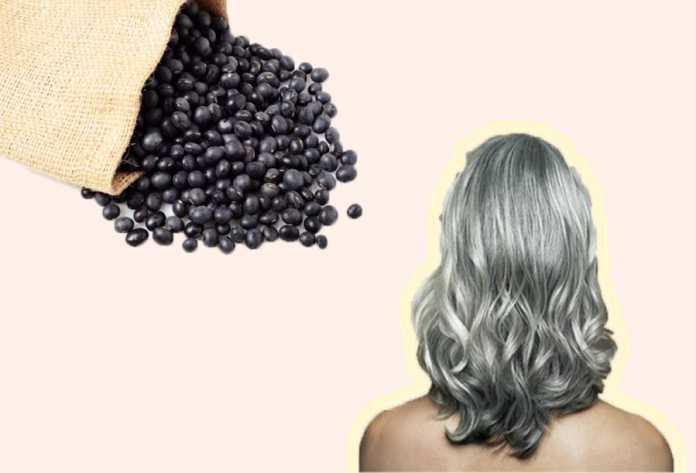 Chữa tóc bạc bằng đậu đen