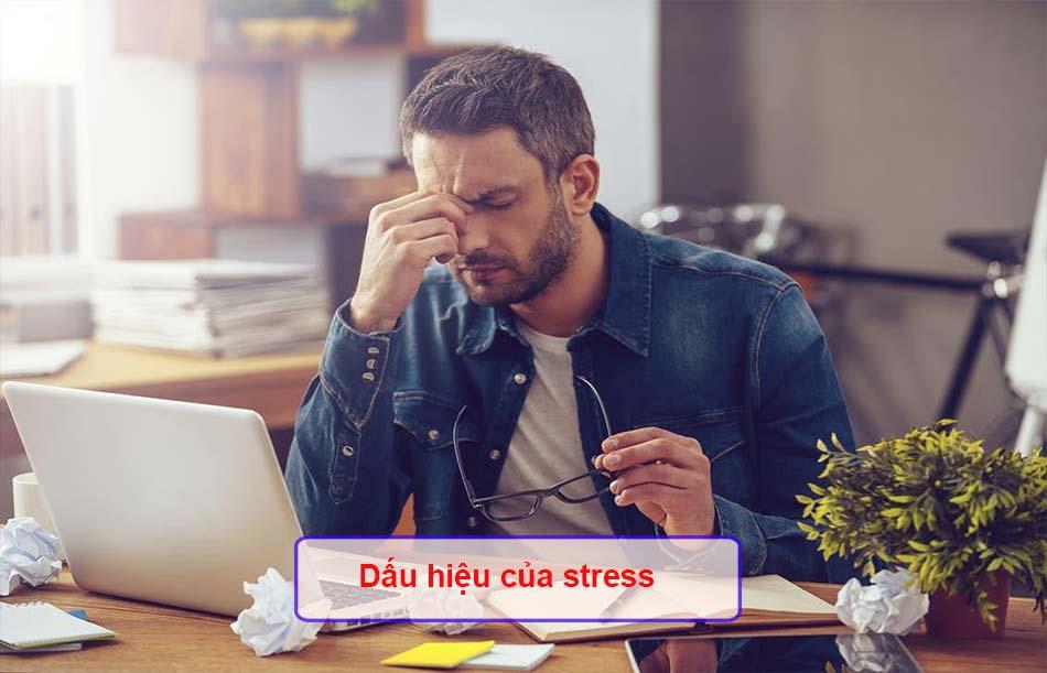 Dấu hiệu của stress
