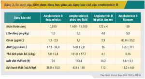 Bảng 3. So sánh đặc điểm dược động học giữa các dạng bào chế của amphotericin B