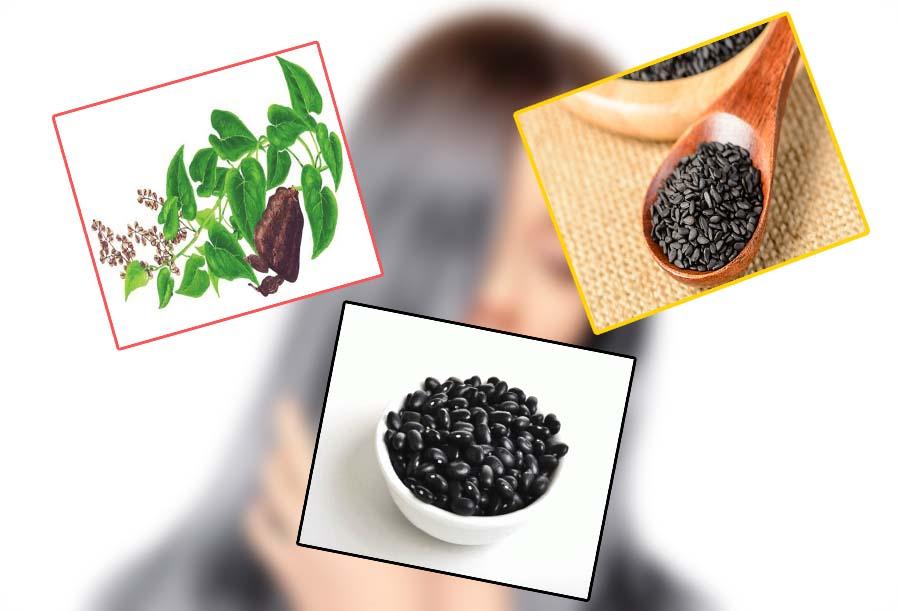 Bài thuốc đậu đen và hà thủ ô, vừng đen