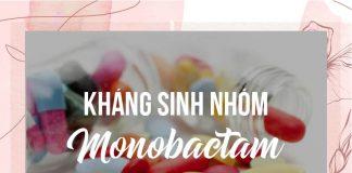 Kháng sinh nhóm Monobactam