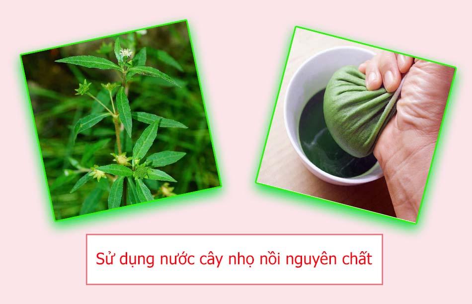 Sử dụng nước cây nhọ nồi nguyên chất