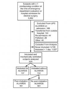 Hình 1. Sơ đồ quy trình sàng lọc và đánh giá trường hợp. LIPS = Nghiên cứu phòng chống tổn thương phổi. ALI = tổn thương phổi cấp tính.