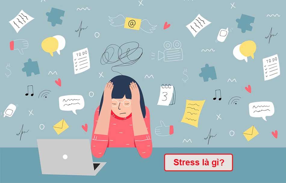 Stress là gì?