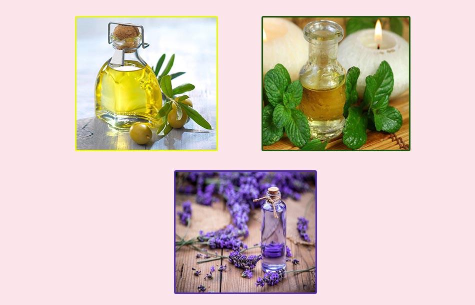 Thành phần chính: oải hương, bạc hà, dầu oliu