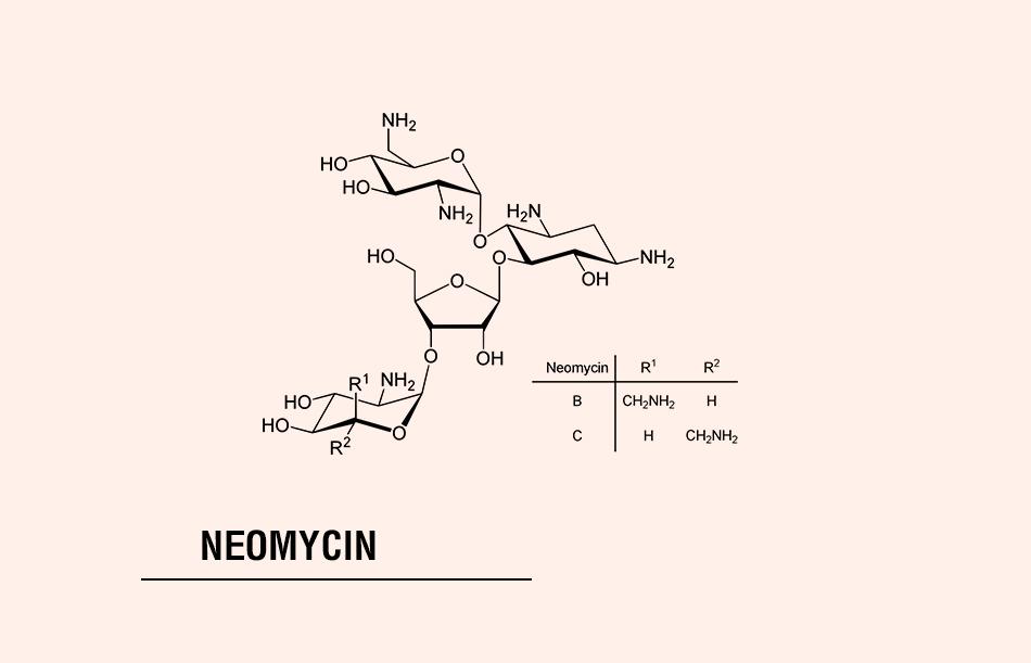 Cấu trúc hóa học của Neomycin
