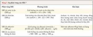 Bảng 3. Sự phân vùng của SBE.*