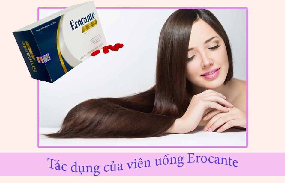 Tác dụng của viên uống Erocante