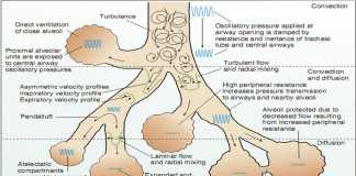 Thông khí rung tần số cao ở trẻ em