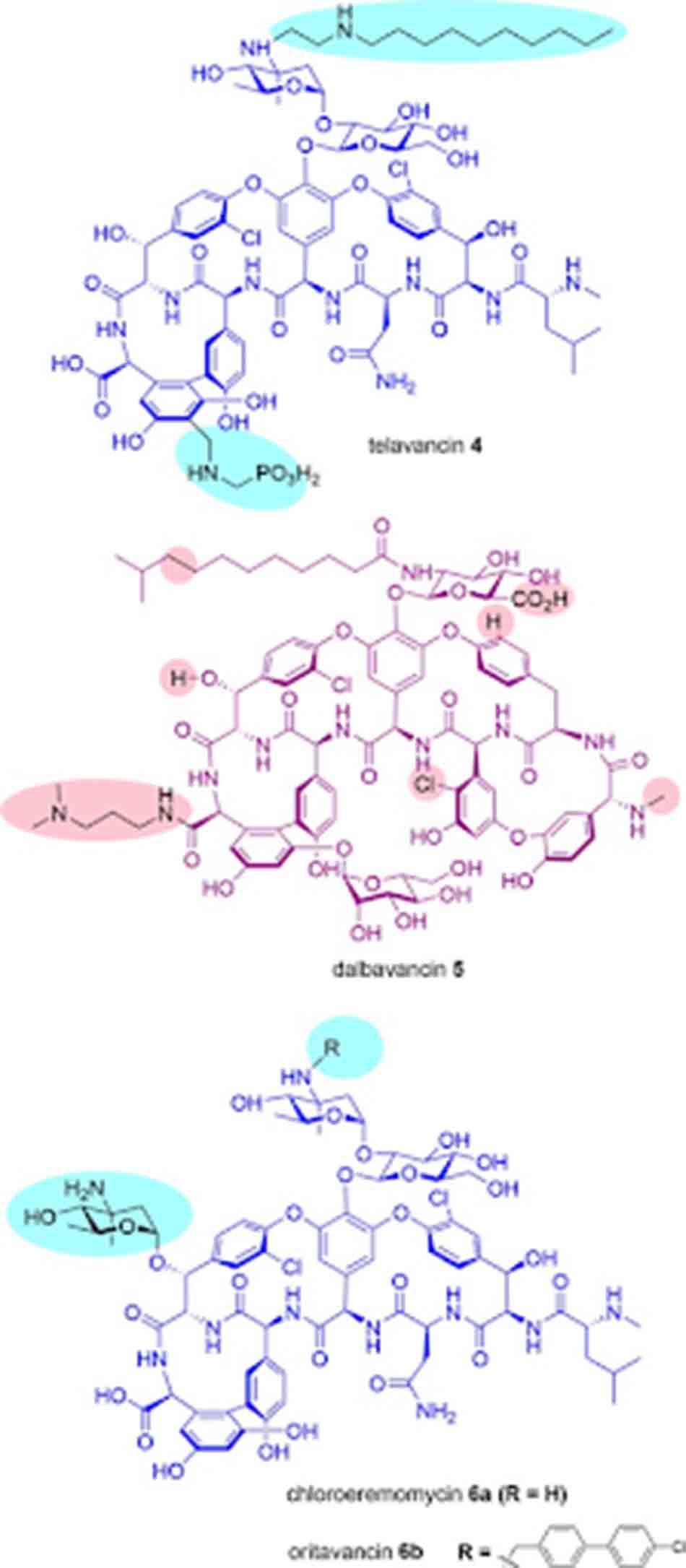 Cấu trúc hóa học của các Glycopeptide bán tổng hợp.