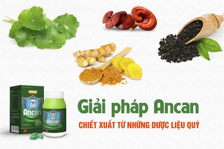 Ancan được chiết xuất từ nhiều loại dược liệu quý
